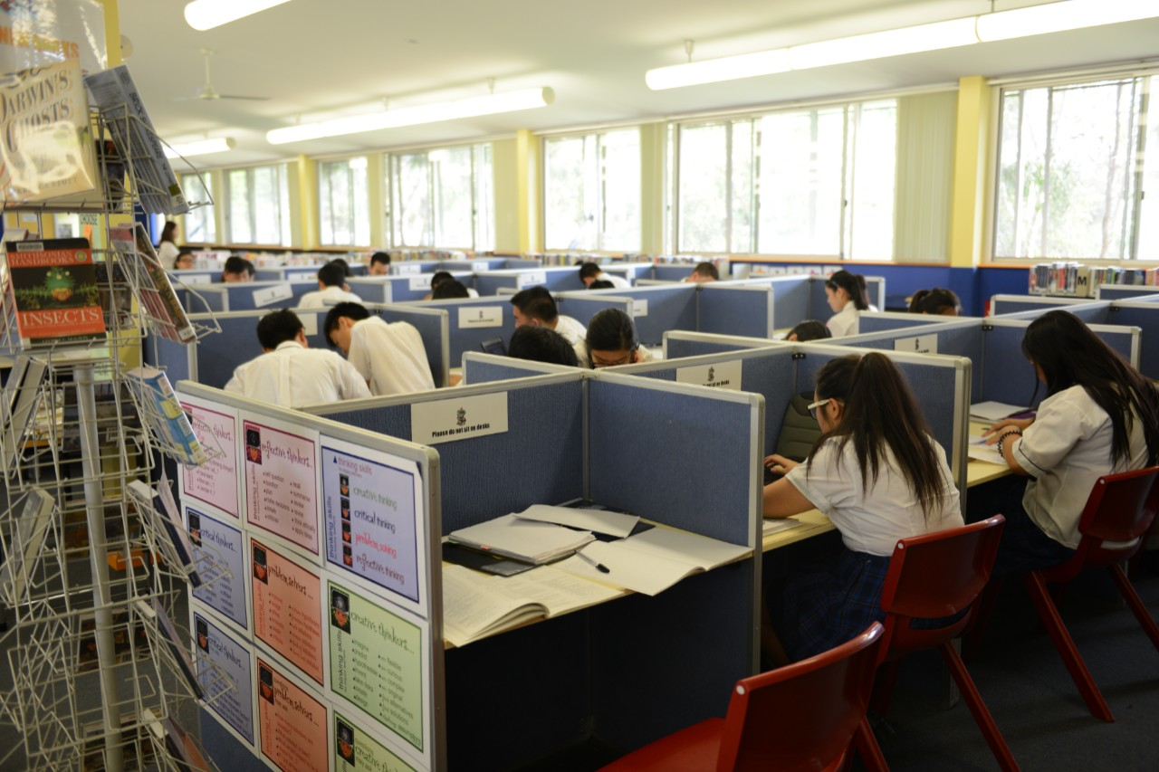 Students using the study desks in the library.