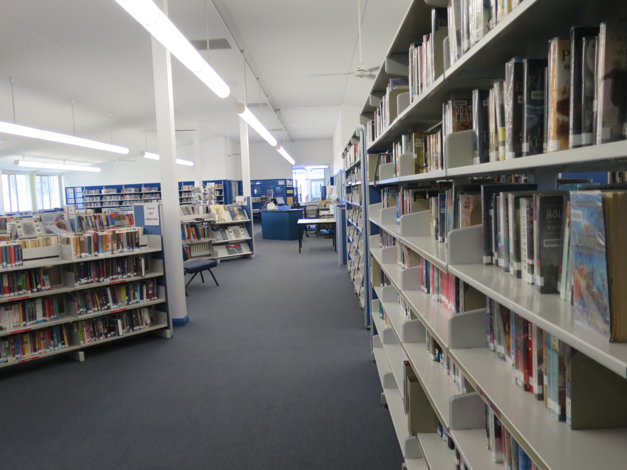 Library books on the library shelves.